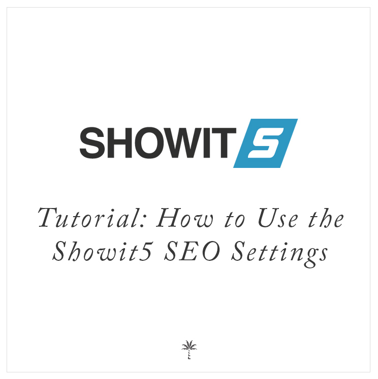 Tutorial: How to Use the Showit5 SEO Settings | Davey & Krista
