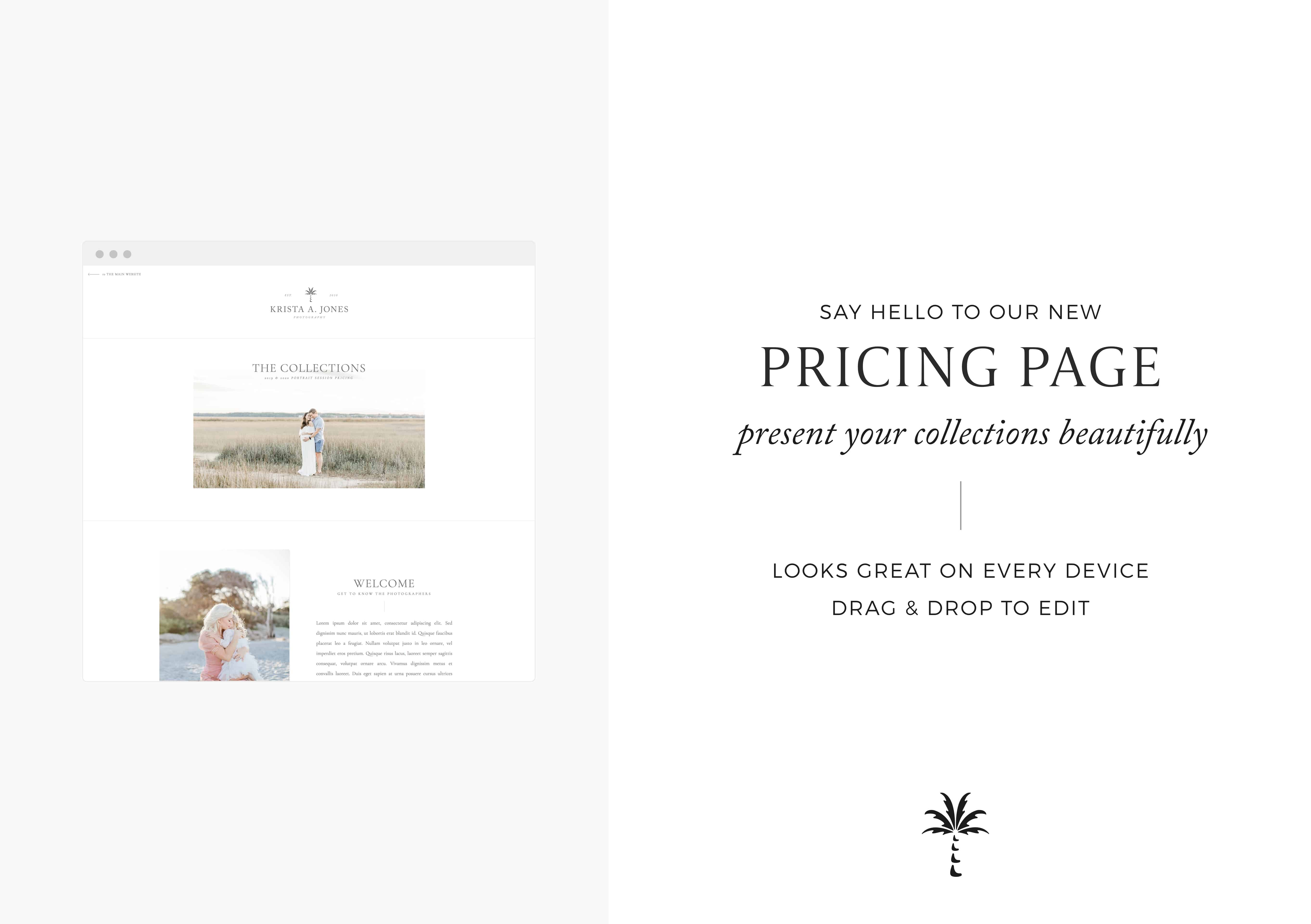 Display your pricing beautifully on your Showit website with this easy-to-edit template | Davey & Krista
