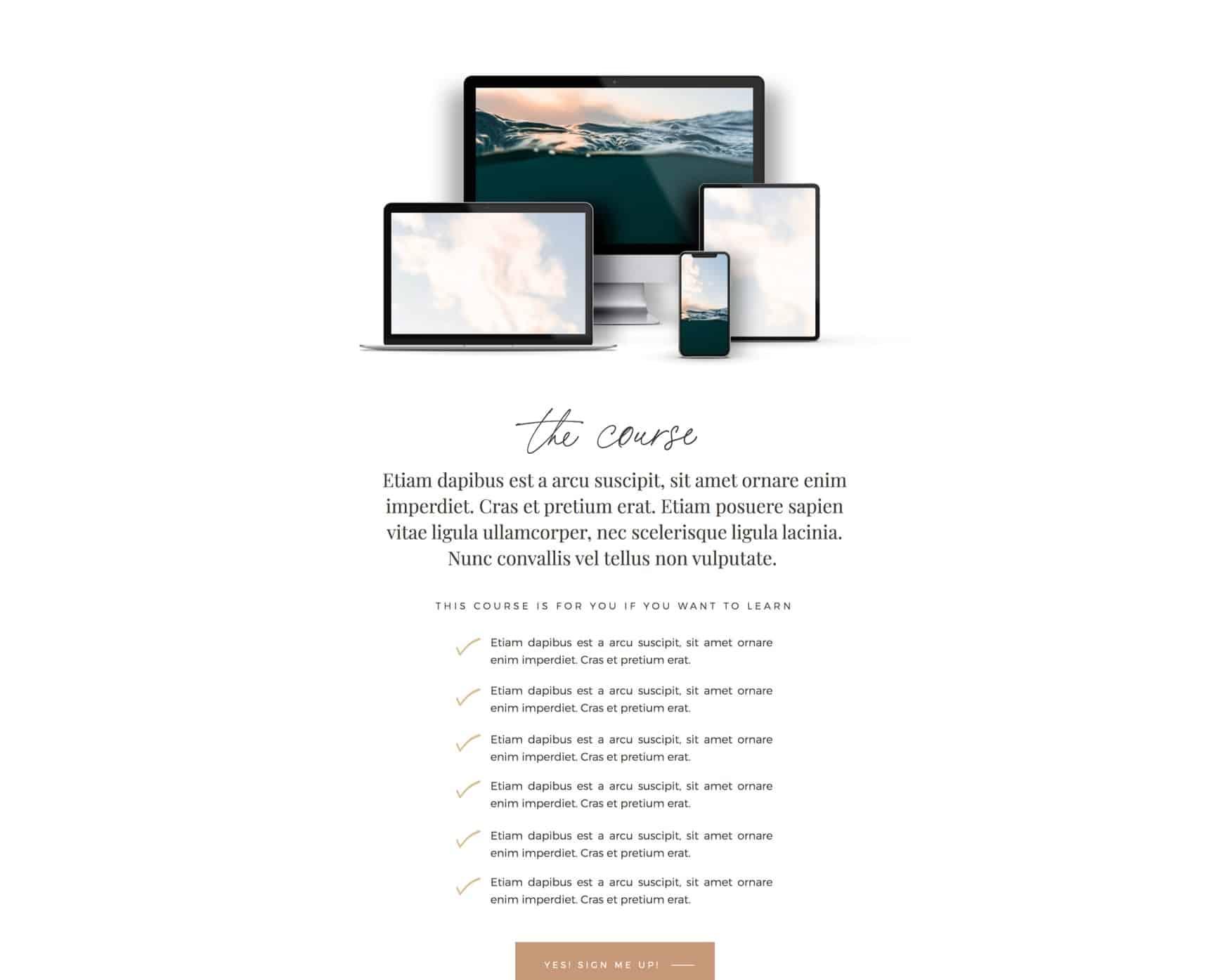 Sales Page (Showit)