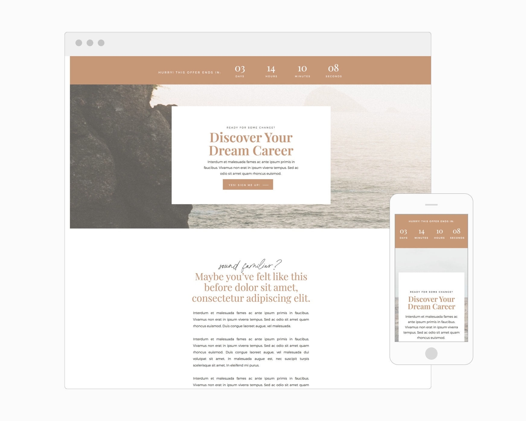 Sales Page (WordPress)