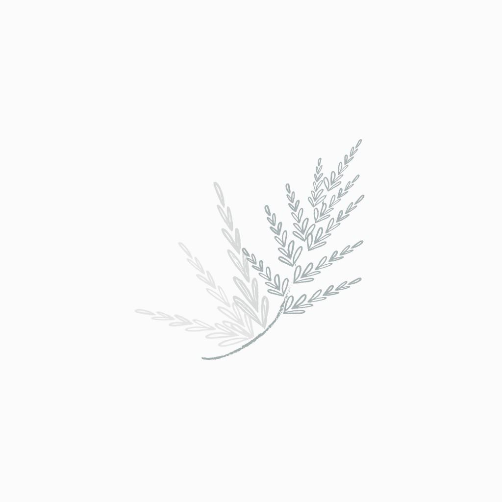 Classic, elegant logo design for photographer Joffoto by Davey & Krista