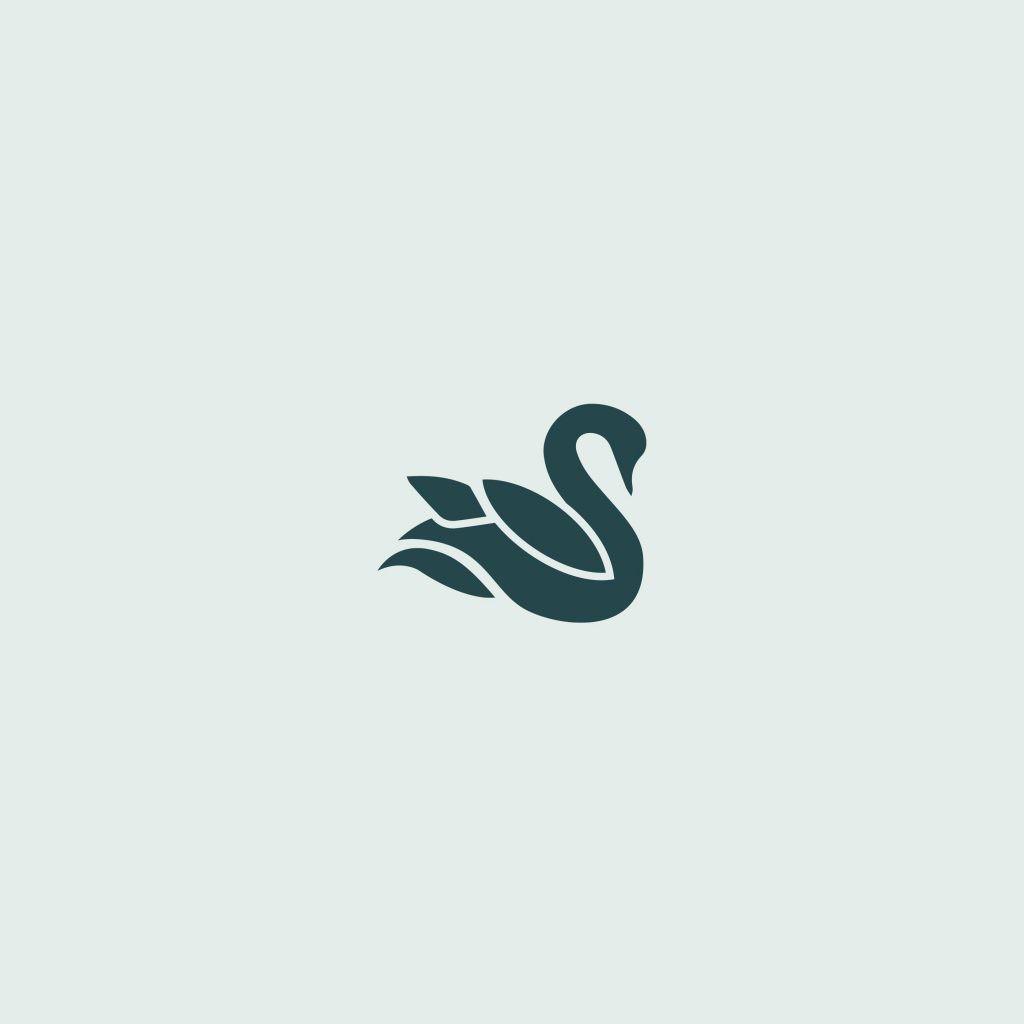 Custom Logo Design for photographer More Beatty